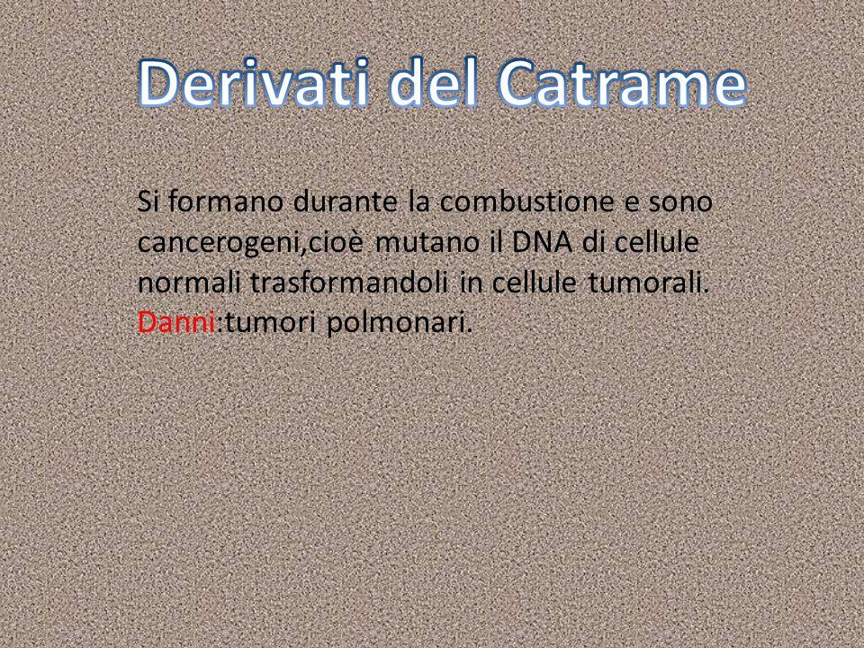 Derivati del CatrameSi formano durante la combustione e sono cancerogeni,cioè mutano il DNA di cellule normali trasformandoli in cellule tumorali.