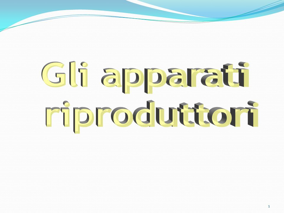 Gli apparati riproduttori