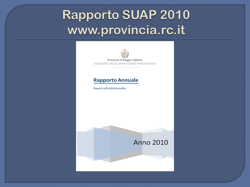 Rapporto SUAP 2010 www.provincia.rc.it
