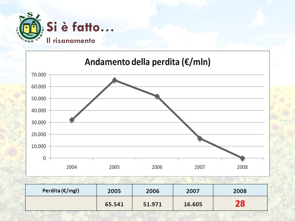 Si è fatto… 28 Il risanamento 2005 2006 2007 2008 65.541 51.971 16.605