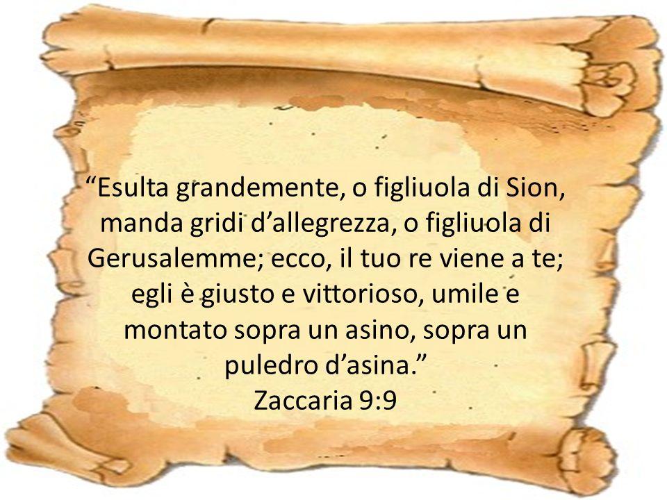 Esulta grandemente, o figliuola di Sion, manda gridi d'allegrezza, o figliuola di Gerusalemme; ecco, il tuo re viene a te; egli è giusto e vittorioso, umile e montato sopra un asino, sopra un puledro d'asina. Zaccaria 9:9
