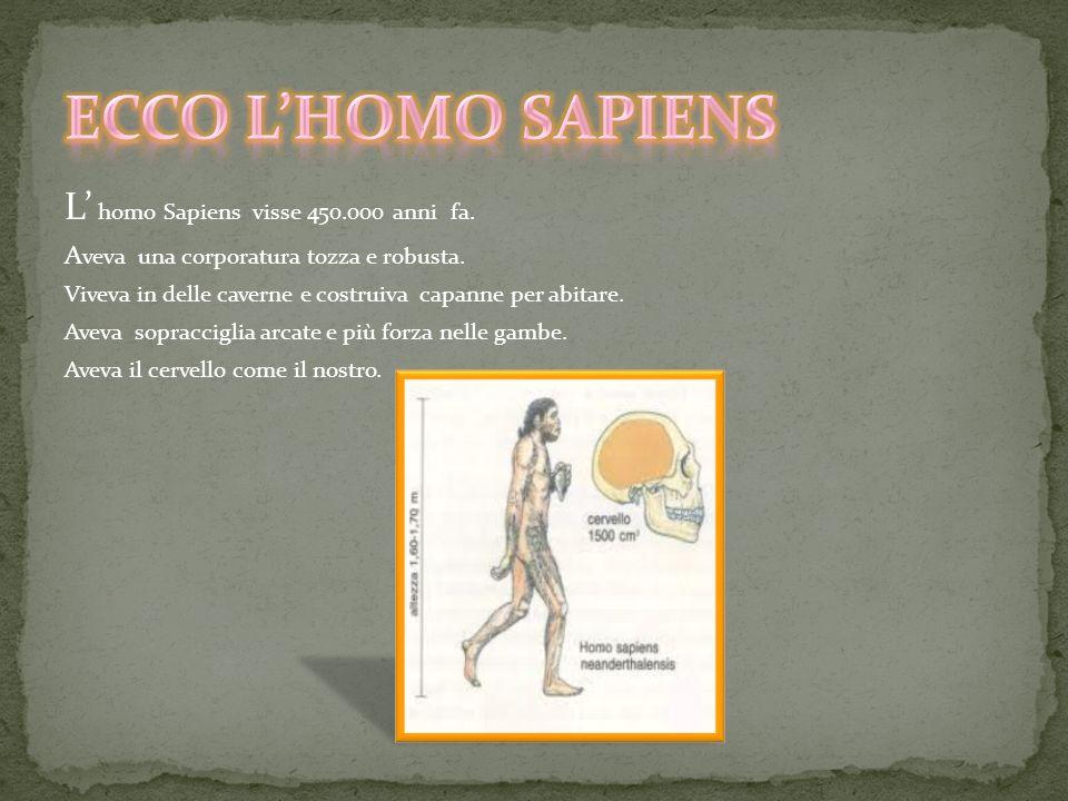 ECCO L'HOMO SAPIENS L' homo Sapiens visse 450.000 anni fa.