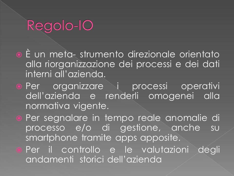 Regolo-IO È un meta- strumento direzionale orientato alla riorganizzazione dei processi e dei dati interni all'azienda.