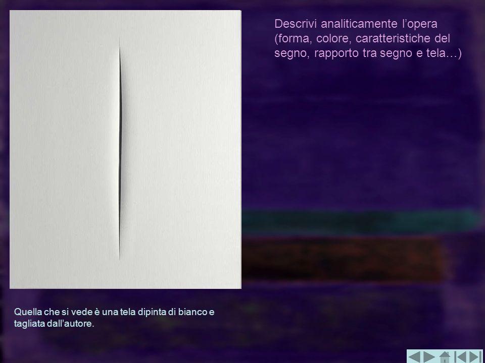 Descrivi analiticamente l'opera (forma, colore, caratteristiche del