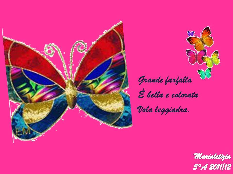 Grande farfalla È bella e colorata Vola leggiadra. Marialetizia