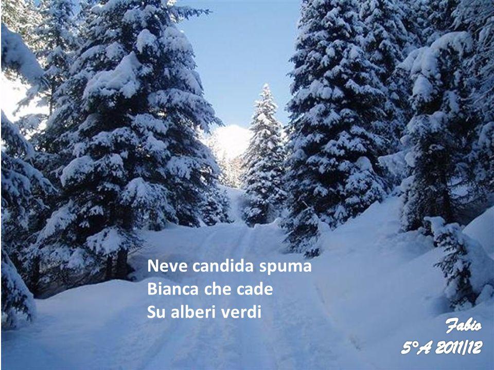 Neve candida spuma Bianca che cade Su alberi verdi Fabio 5°A 2011/12