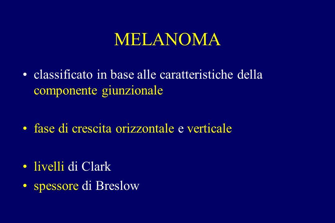 MELANOMA classificato in base alle caratteristiche della componente giunzionale. fase di crescita orizzontale e verticale.