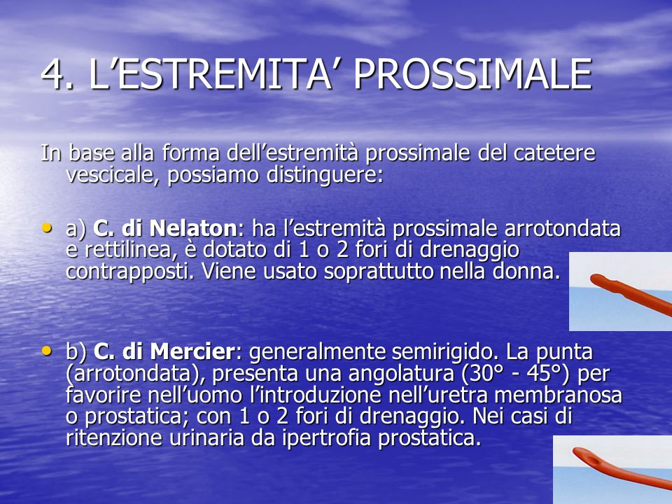 4. L'ESTREMITA' PROSSIMALE