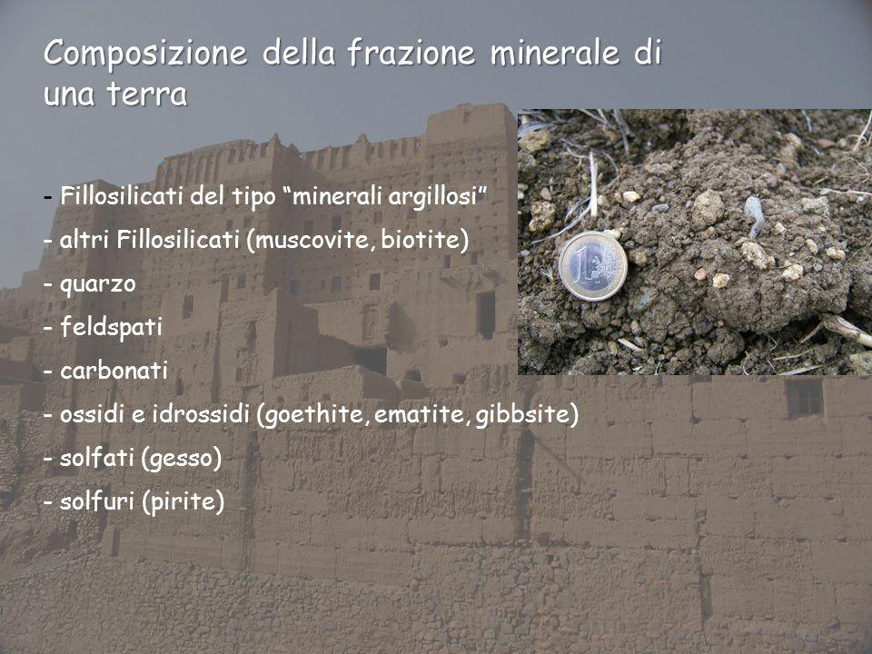 Composizione della frazione minerale di una terra