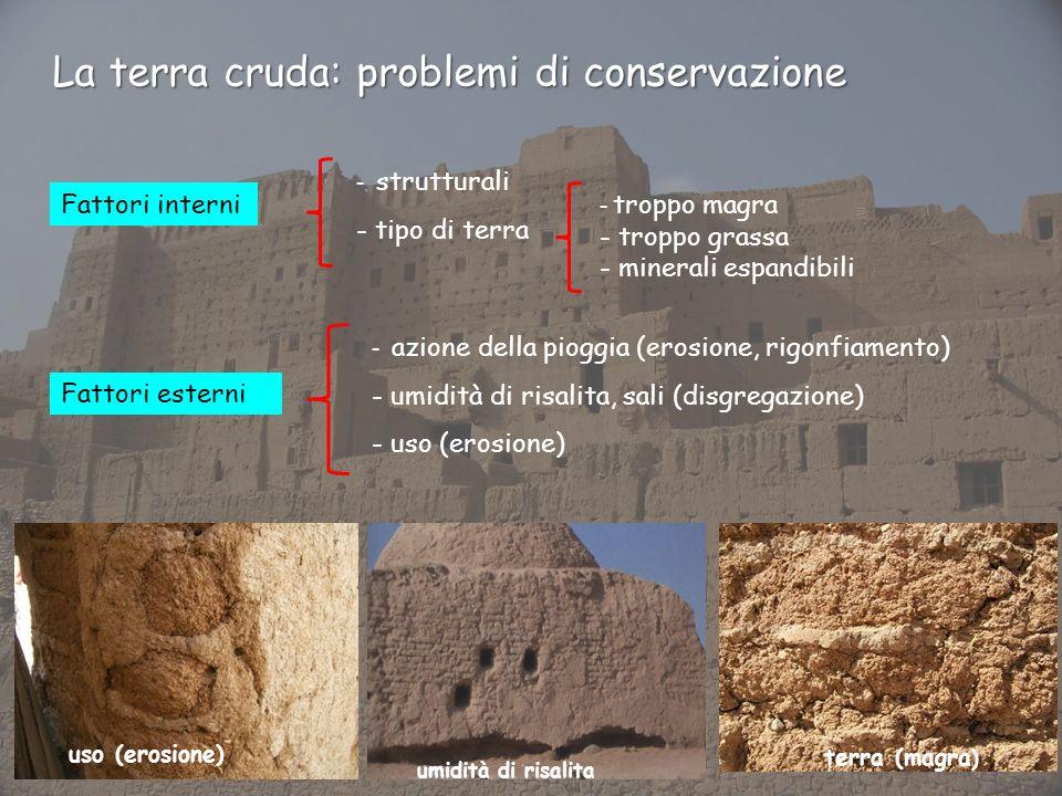 La terra cruda: problemi di conservazione