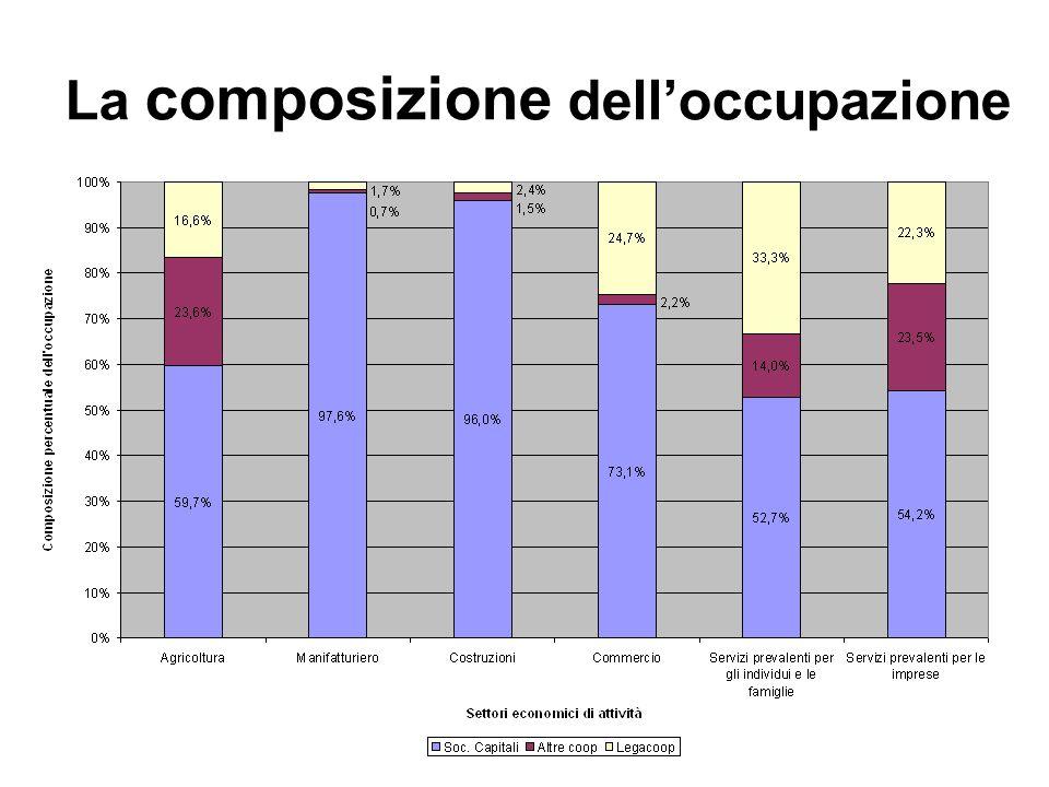 La composizione dell'occupazione