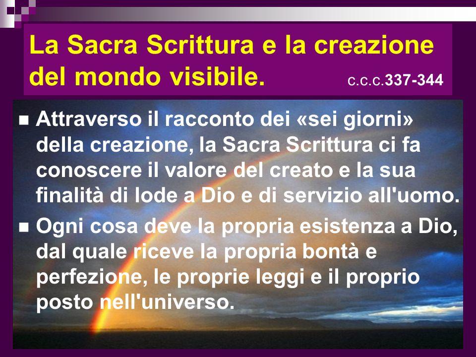 La Sacra Scrittura e la creazione del mondo visibile. c.c.c.337-344
