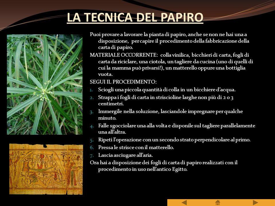 LA TECNICA DEL PAPIRO