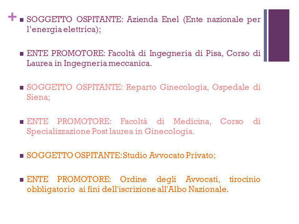 SOGGETTO OSPITANTE: Azienda Enel (Ente nazionale per l'energia elettrica);