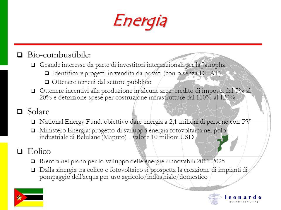 Energia Bio-combustibile: Solare Eolico