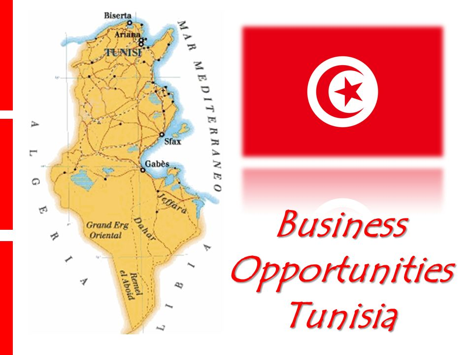 Business Opportunities Tunisia