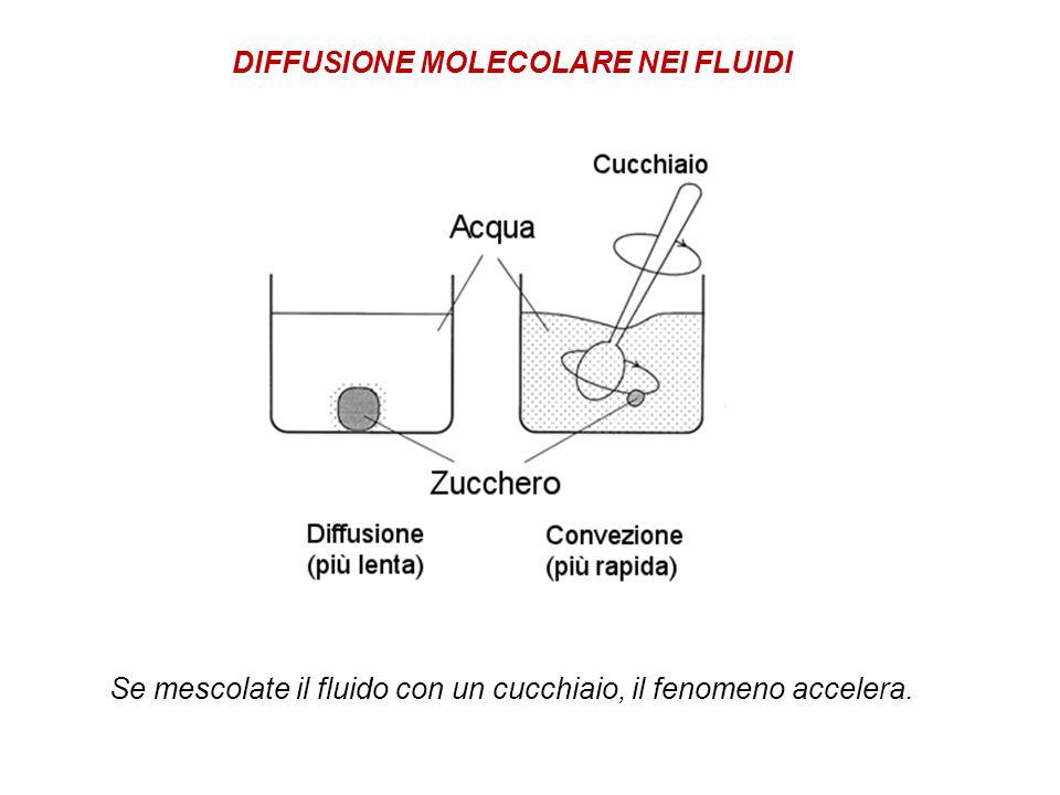 DIFFUSIONE MOLECOLARE NEI FLUIDI