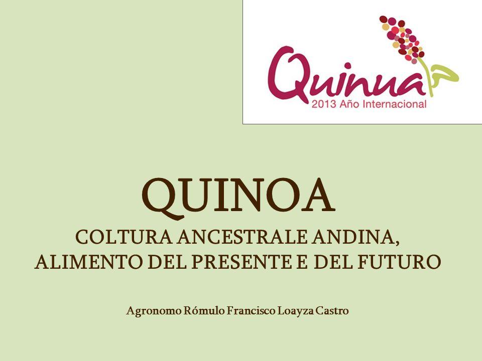 QUINOA COLTURA ANCESTRALE ANDINA, ALIMENTO DEL PRESENTE E DEL FUTURO Agronomo Rómulo Francisco Loayza Castro