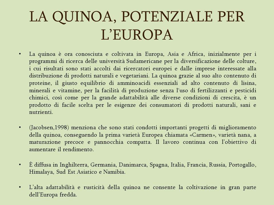 LA QUINOA, POTENZIALE PER L'EUROPA