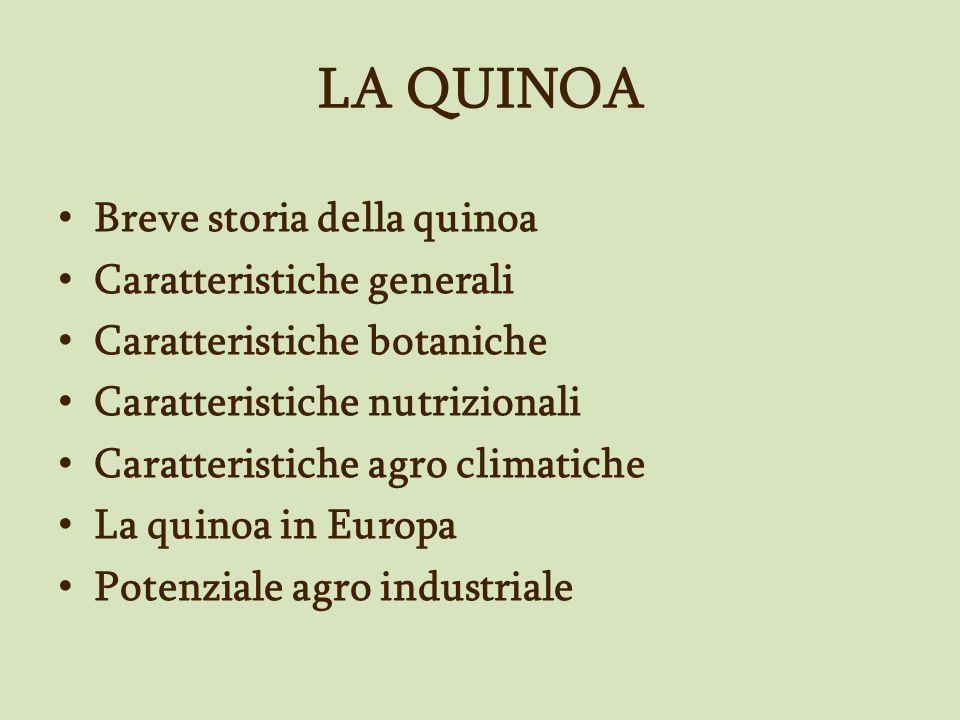 LA QUINOA Breve storia della quinoa Caratteristiche generali