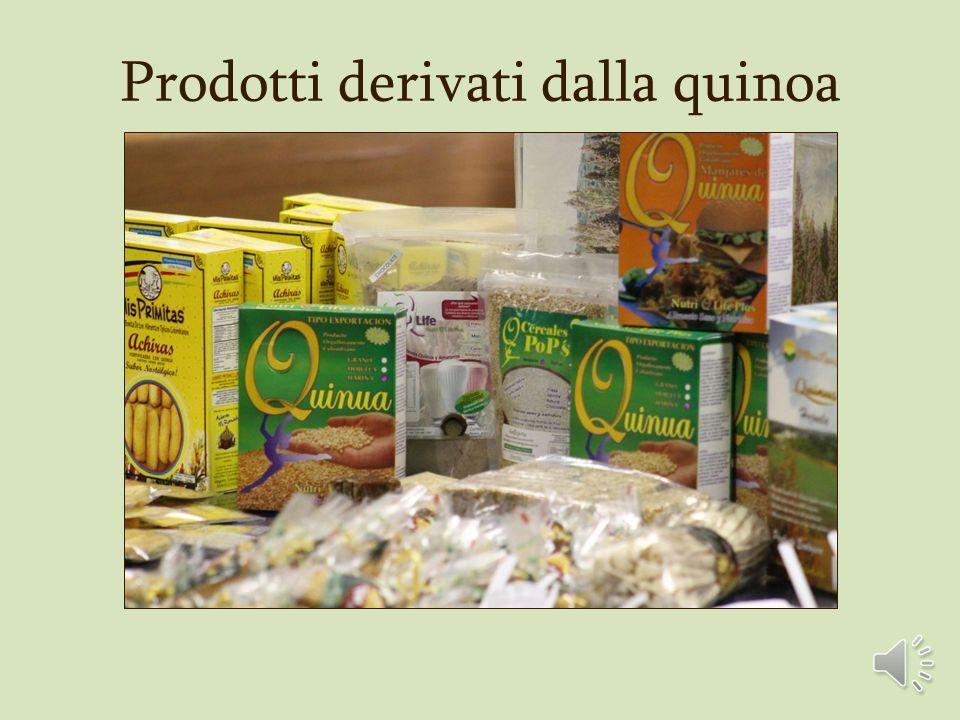 Prodotti derivati dalla quinoa