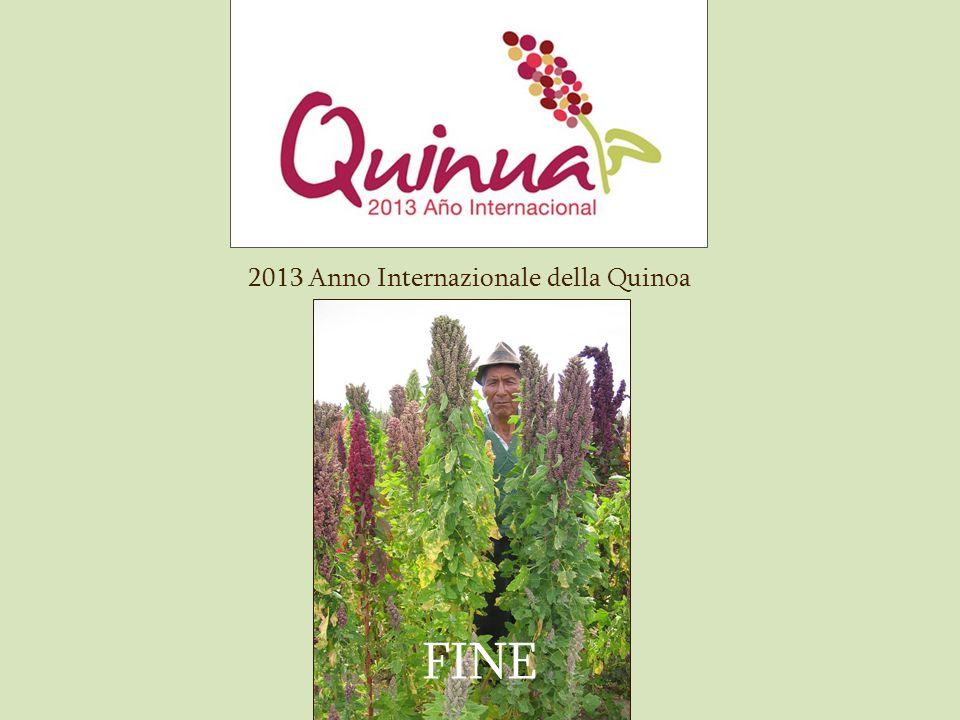 2013 Anno Internazionale della Quinoa