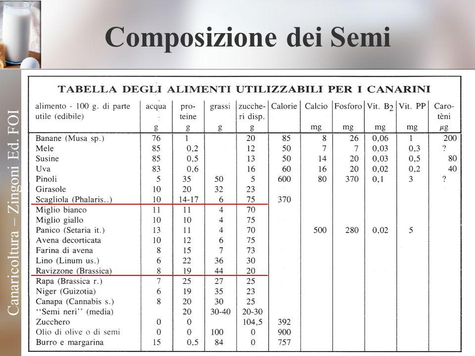 Composizione dei Semi Canaricoltura – Zingoni Ed. FOI