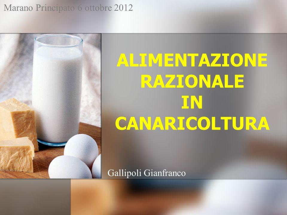 ALIMENTAZIONE RAZIONALE IN CANARICOLTURA