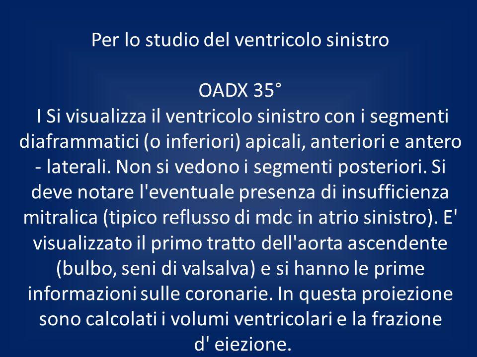 Per lo studio del ventricolo sinistro OADX 35° I Si visualizza il ventricolo sinistro con i segmenti diaframmatici (o inferiori) apicali, anteriori e antero - laterali.