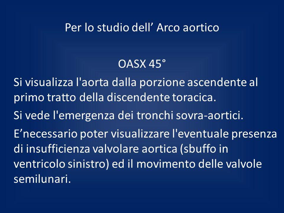 Per lo studio dell' Arco aortico OASX 45° Si visualizza l aorta dalla porzione ascendente al primo tratto della discendente toracica.