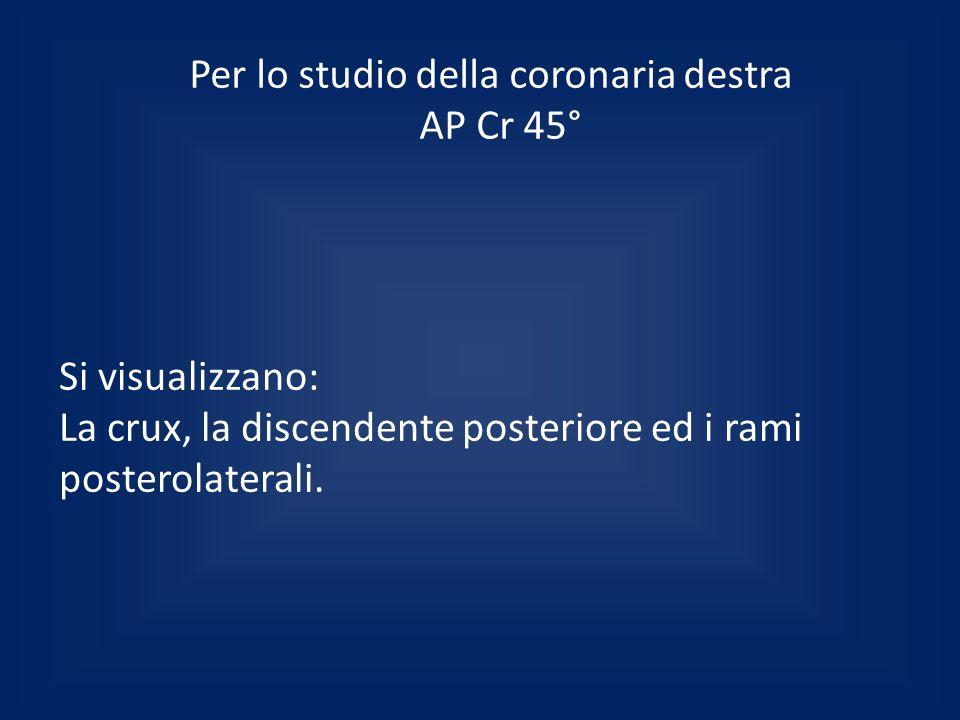 Per lo studio della coronaria destra AP Cr 45°
