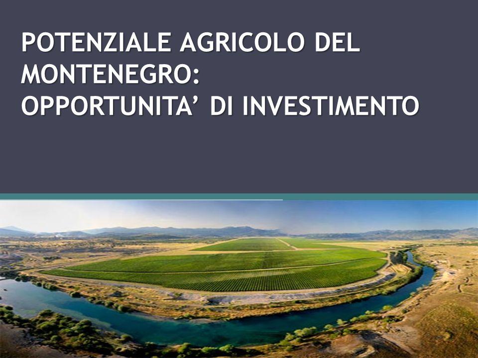 POTENZIALE AGRICOLO DEL MONTENEGRO: OPPORTUNITA' DI INVESTIMENTO