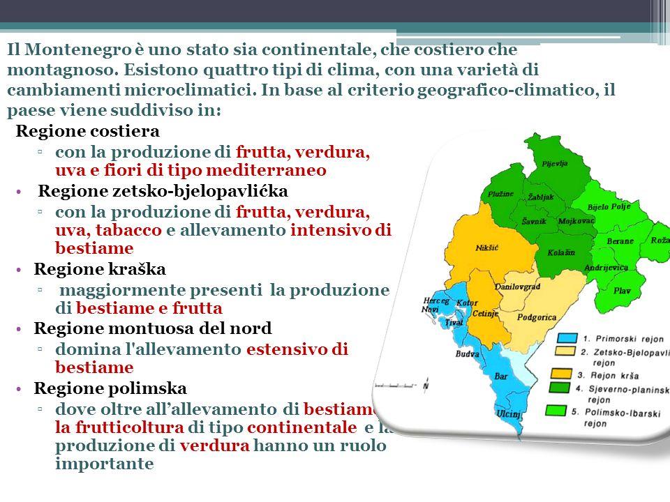 Il Montenegro è uno stato sia continentale, che costiero che montagnoso. Esistono quattro tipi di clima, con una varietà di cambiamenti microclimatici. In base al criterio geografico-climatico, il paese viene suddiviso in:
