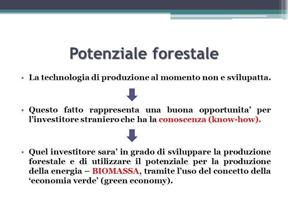 Potenziale forestale La technologia di produzione al momento non e svilupatta.