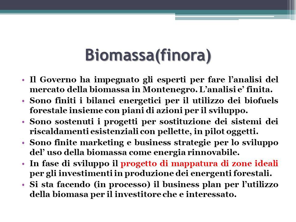 Biomassa(finora) Il Governo ha impegnato gli esperti per fare l'analisi del mercato della biomassa in Montenegro. L'analisi e' finita.