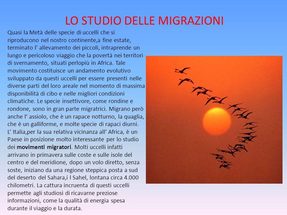 LO STUDIO DELLE MIGRAZIONI