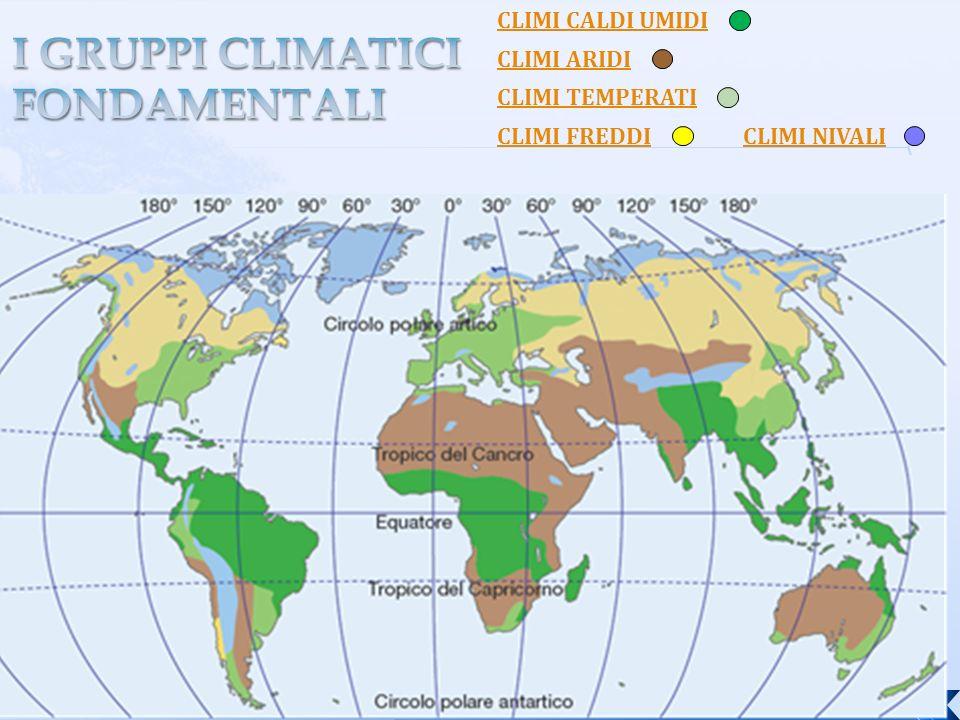 I GRUPPI CLIMATICI FONDAMENTALI