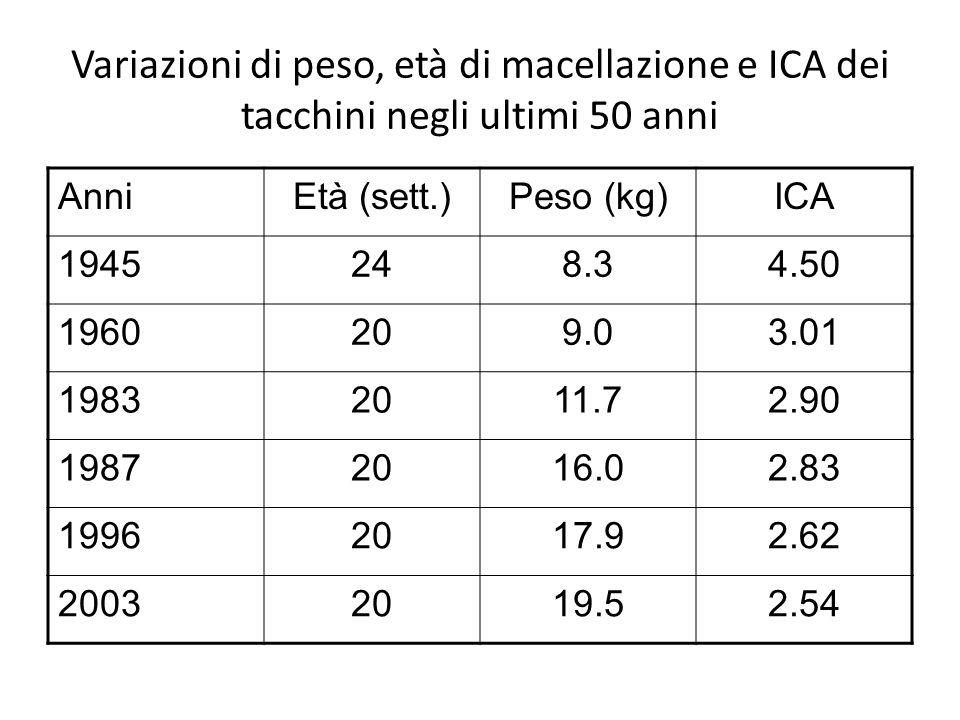Variazioni di peso, età di macellazione e ICA dei tacchini negli ultimi 50 anni
