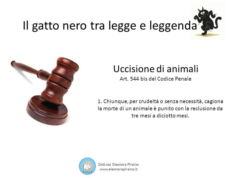 Il gatto nero tra legge e leggenda