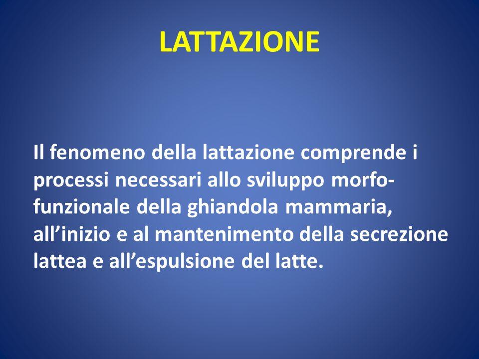 LATTAZIONE