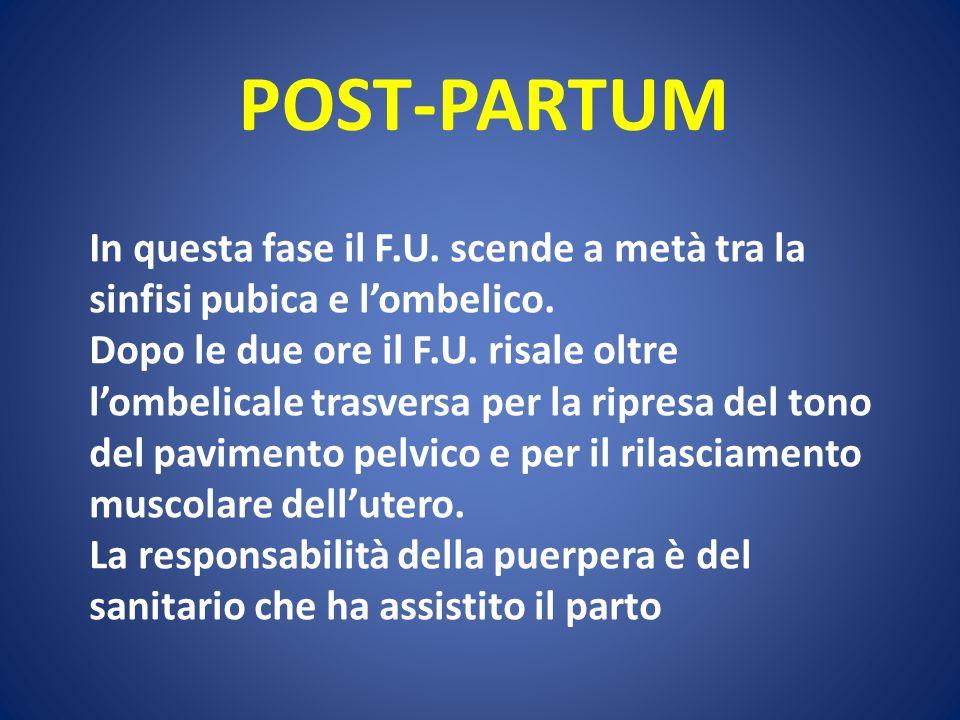 POST-PARTUM In questa fase il F.U. scende a metà tra la sinfisi pubica e l'ombelico.
