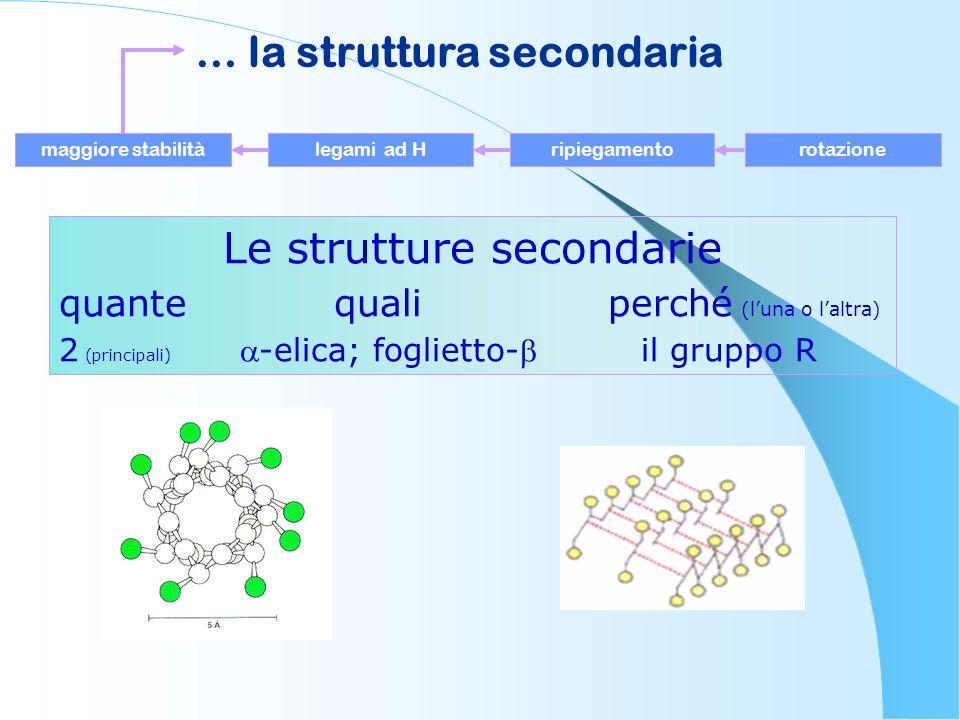 Le strutture secondarie