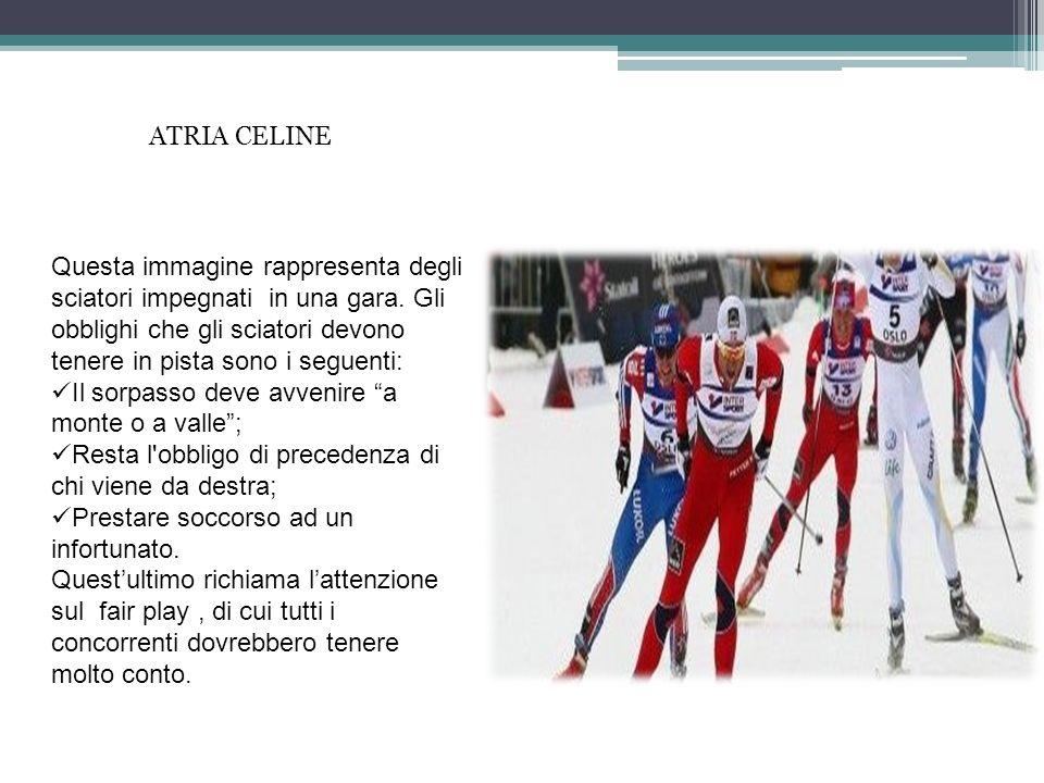 ATRIA CELINE Questa immagine rappresenta degli sciatori impegnati in una gara. Gli obblighi che gli sciatori devono tenere in pista sono i seguenti: