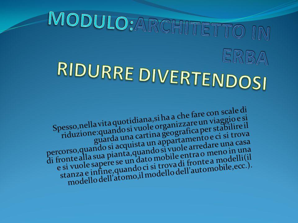 MODULO:ARCHITETTO IN ERBA RIDURRE DIVERTENDOSI