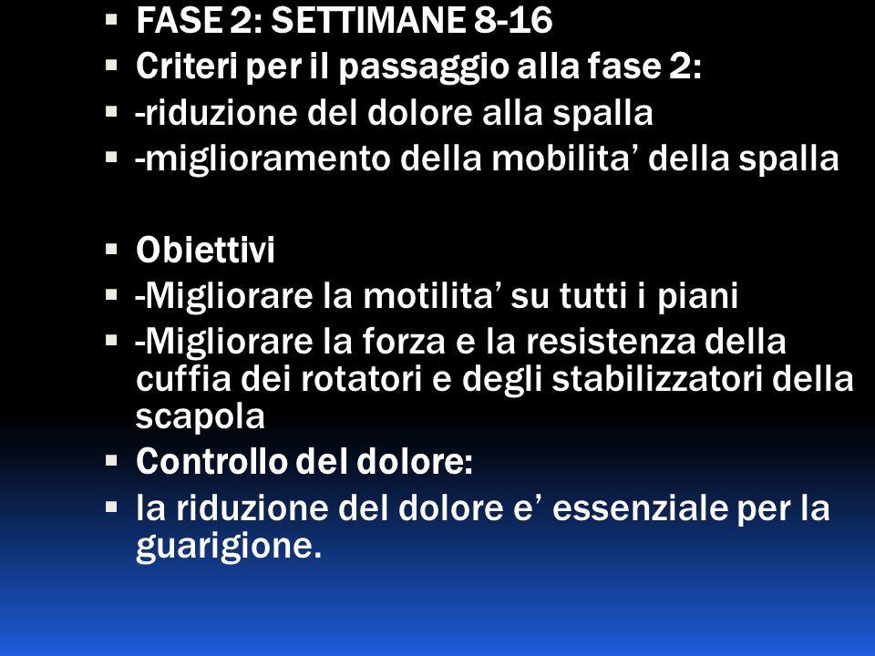 FASE 2: SETTIMANE 8-16 Criteri per il passaggio alla fase 2: -riduzione del dolore alla spalla. -miglioramento della mobilita' della spalla.