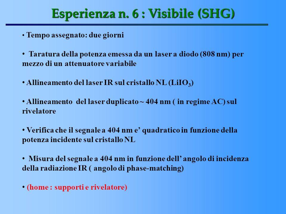 Esperienza n. 6 : Visibile (SHG)