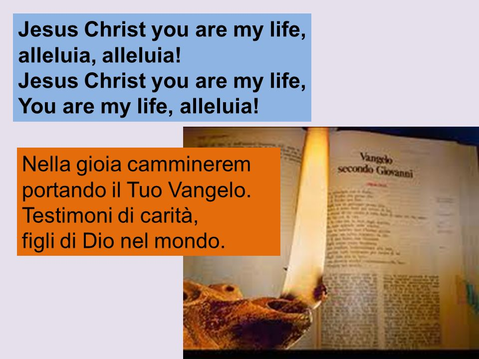 Jesus Christ you are my life,