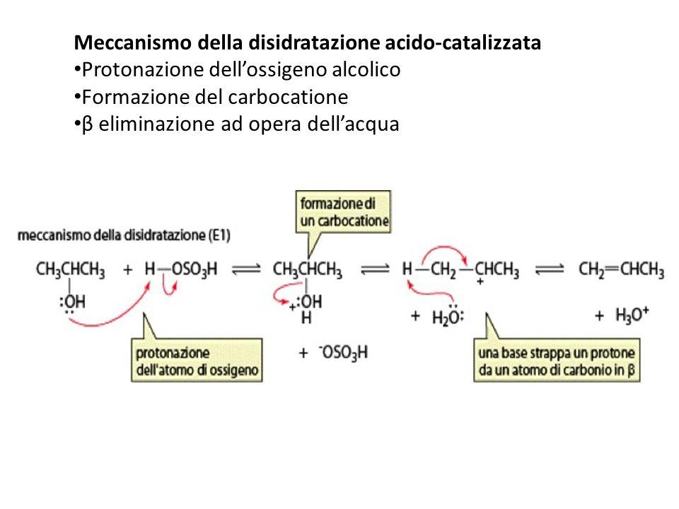Meccanismo della disidratazione acido-catalizzata