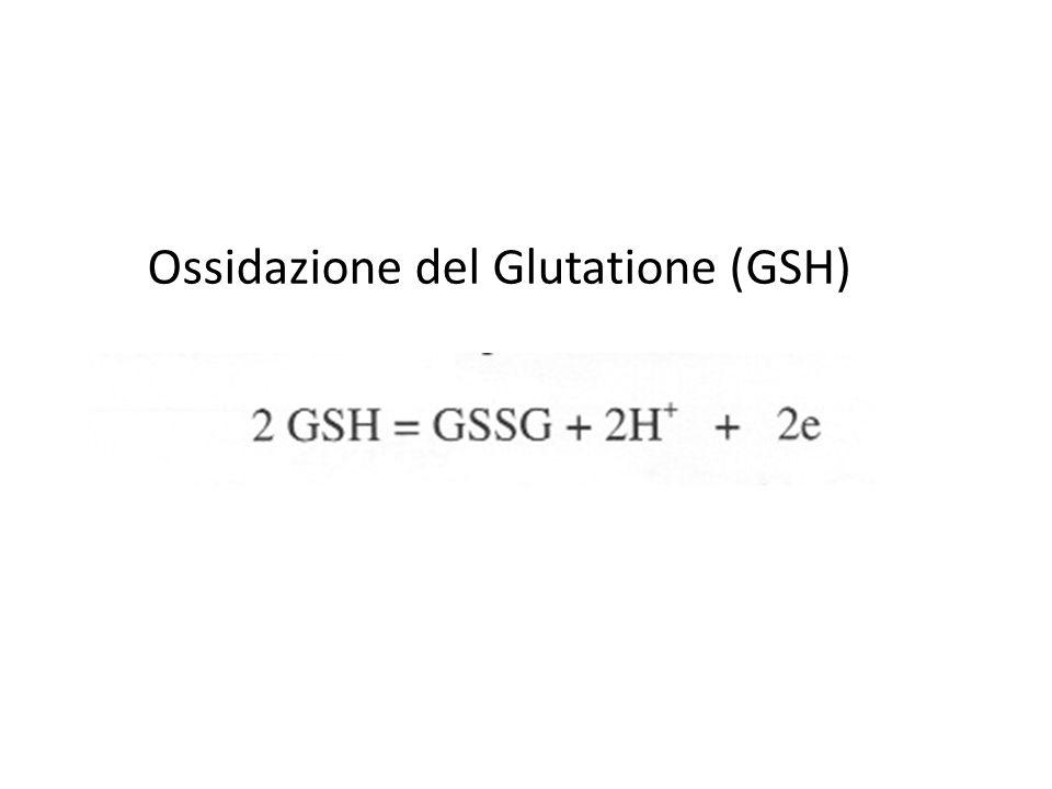 Ossidazione del Glutatione (GSH)