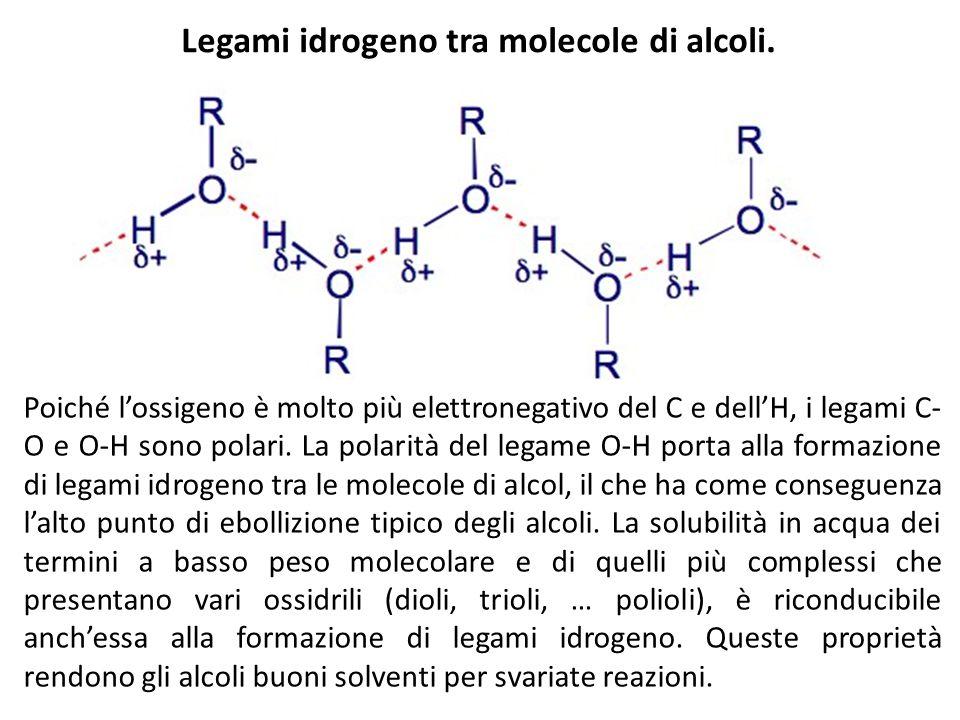 Legami idrogeno tra molecole di alcoli.